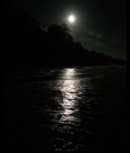 moon on dark water